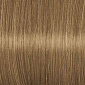 Color Expert Intensiv-Plege Color Creme 8-0 Mittelblond